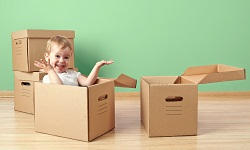 sw1 packers and movers waterloo